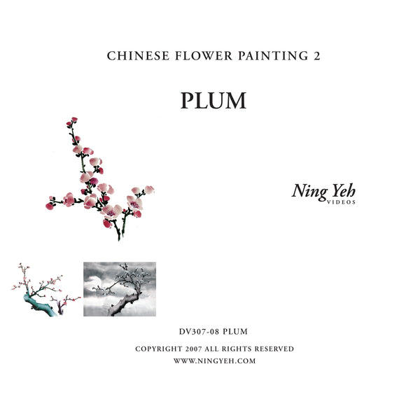 Chinese Flower Painting 2: Plum Video