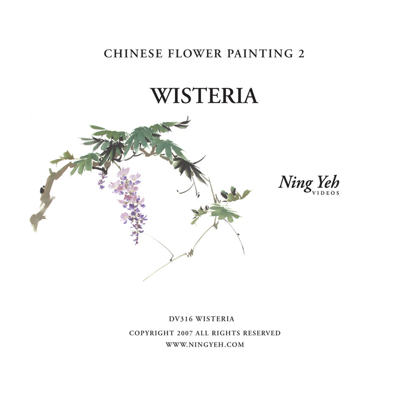 Chinese Flower Painting 2: Wisteria Video