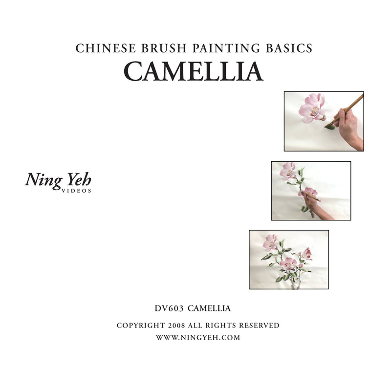 Chinese Brush Painting Basics: Camellia (Pink) DVD: one hour