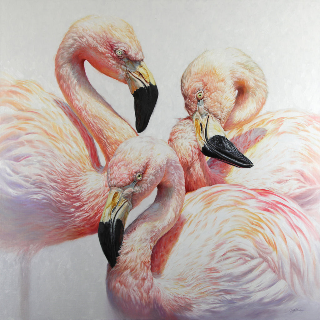 "SOLD ~ Flamingo Flamenco ~ 48""x48"""