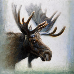 Moose Moods ~ Going to the Sun Gallery