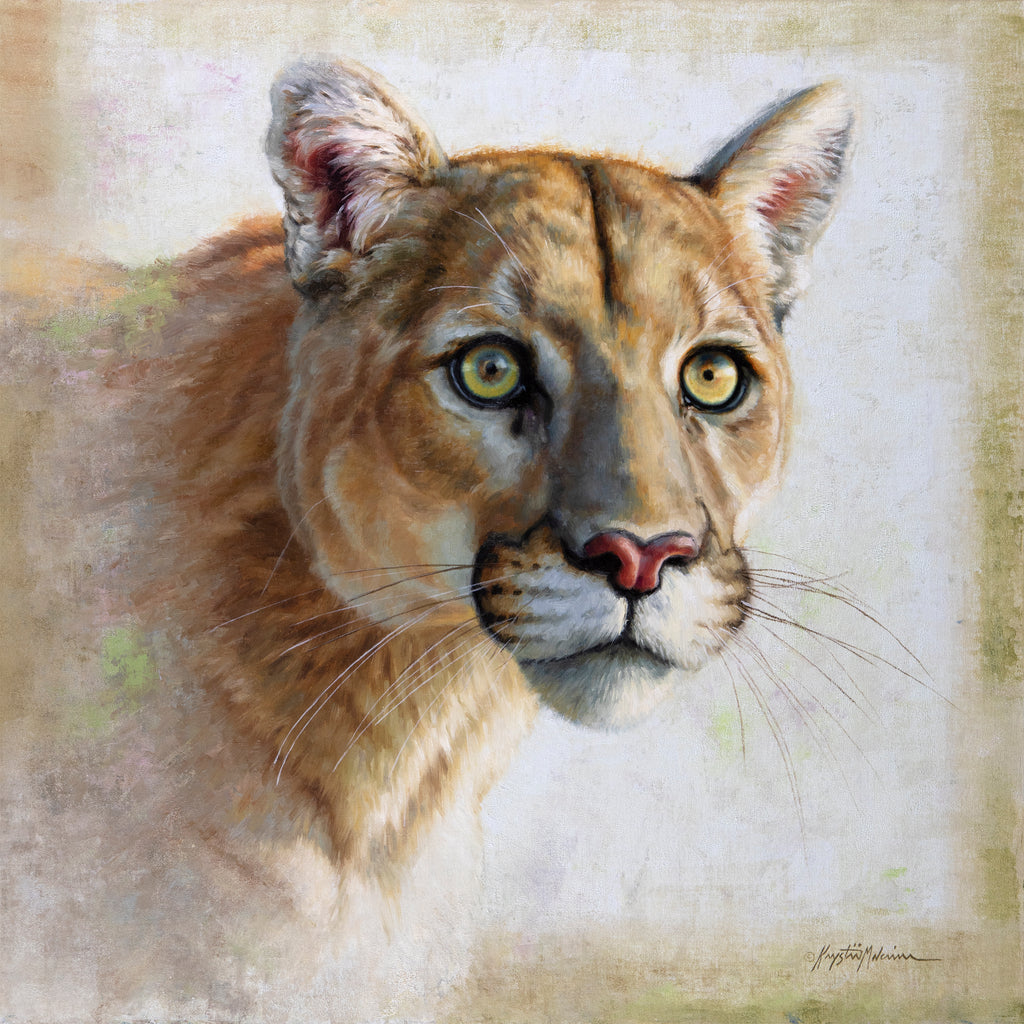 Omahkatayo - Mountain Lion, Blackfoot - Giclée