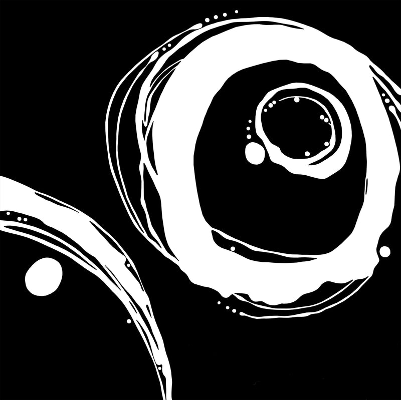 Orbit Variations - White on Black Giclée