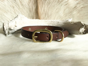 Bridle leather dog collar with name plate