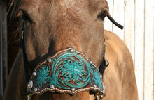 Load image into Gallery viewer, Bronc halter in turquoise and dark brown with studs