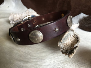 Buffalo nickel dog collar