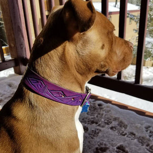 Custom dog collar with landscape design in purple