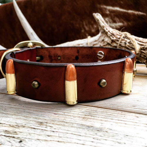 Bullets dog collar on bridle leather