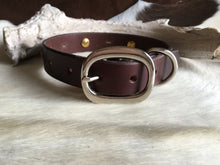 Load image into Gallery viewer, Buffalo nickel dog collar