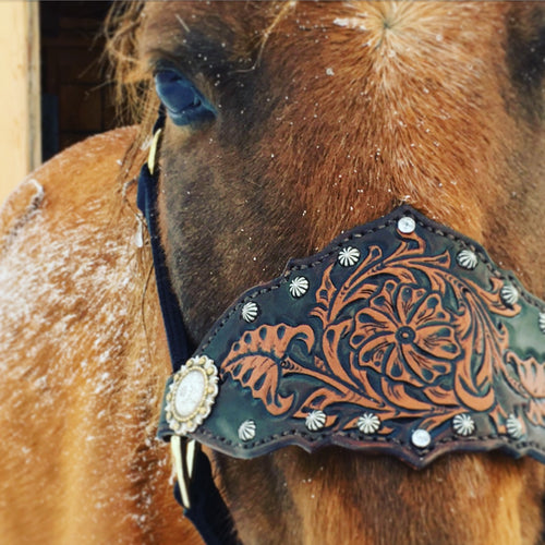 Bronc halter in tan and dark brown with studs