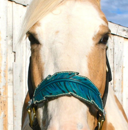 Feather bronc halter In turquoise