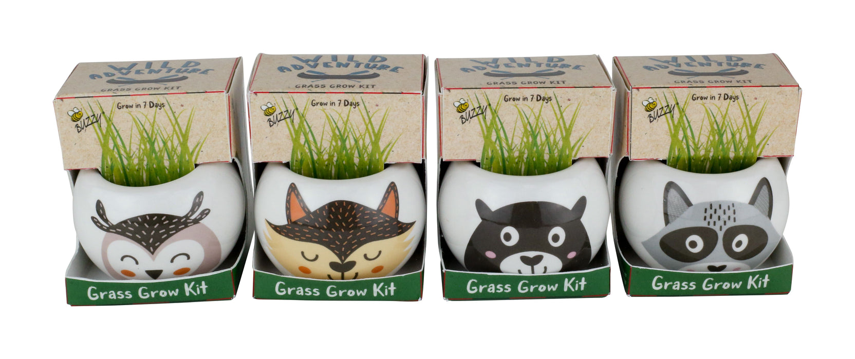 Wild Adventure Ceramic Kit