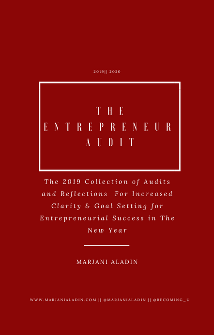 The Entrepreneur Audit