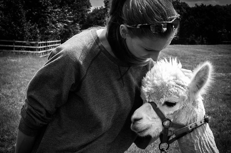 10 Questions with Catherine from Ted and Bessie: An Alpaca Love Story-MAMOQ