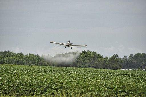 The Cotton Controversy: Is Cotton Really Good or Bad? pesticides