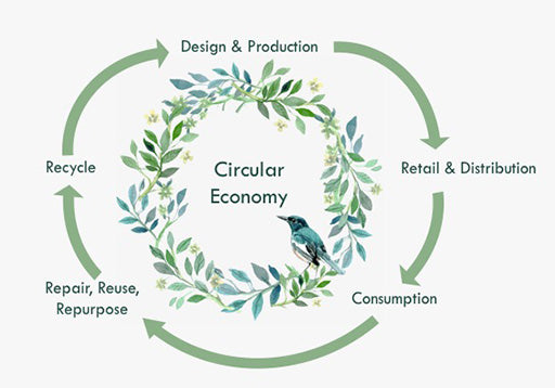 What is a Circular Economy? MAMOQ