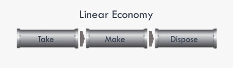 What is a Linear Economy? MAMOQ