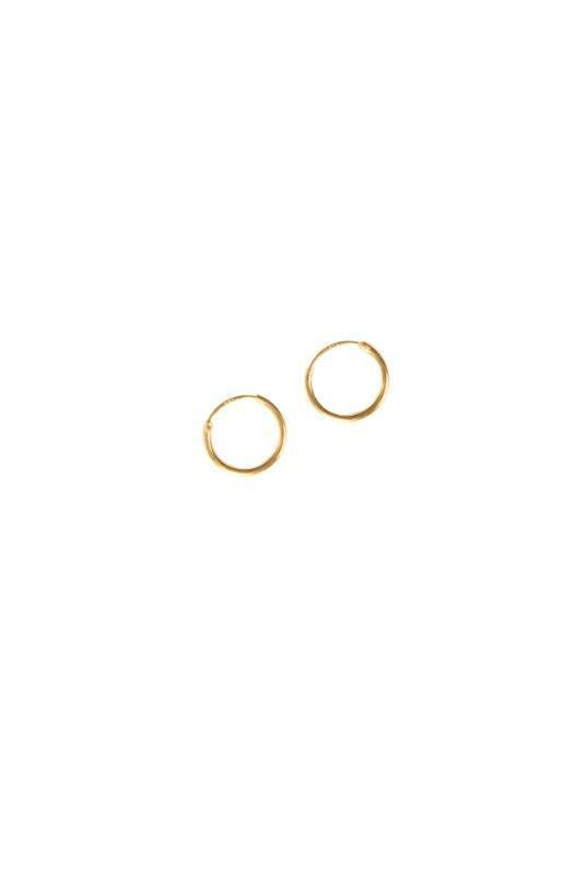 Small Sleeper 18K Gold Plated Hoop Earrings-Birdsong-MAMOQ