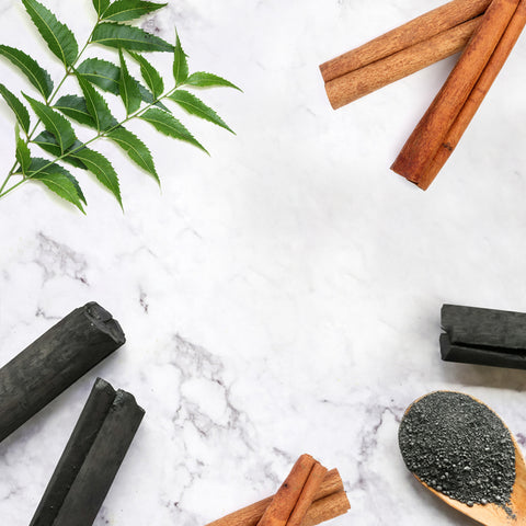 TNW Charcoal Soap Ingrediants
