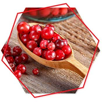 Cranberry & Pomegranate Extract