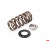 APR - MS100089 - VALVE SPRING SYSTEM -- 2.5 TFSI & 2.5L I5 engines - Set of 20