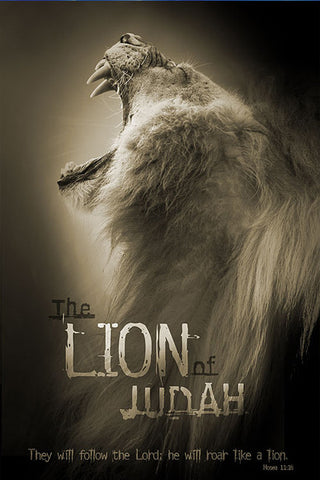 Lion of Judah - Christian Posters