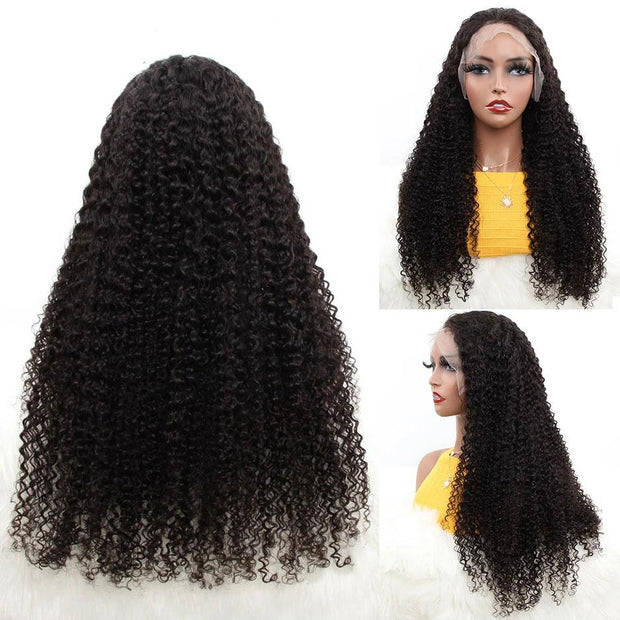 full lace human hair wigs under 200 dollars