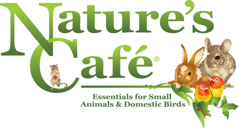 Nature's Best Cafe
