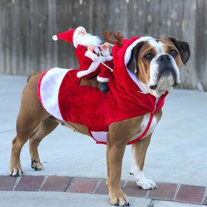 New Christmas Costume Cute Dog