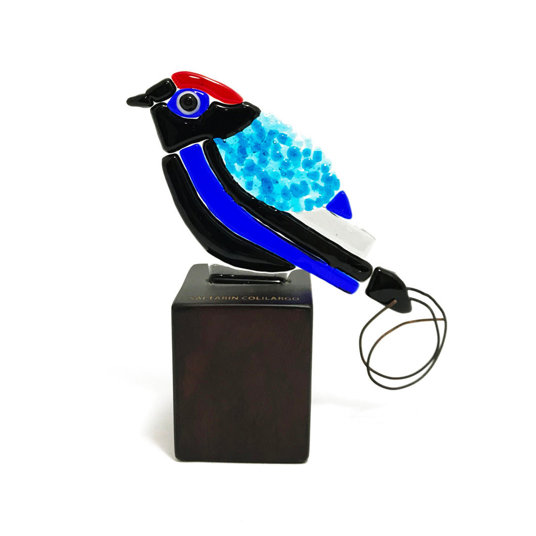 Long-tail Manakin, fused glass figurine