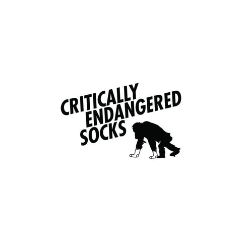 critically-endangered-socks