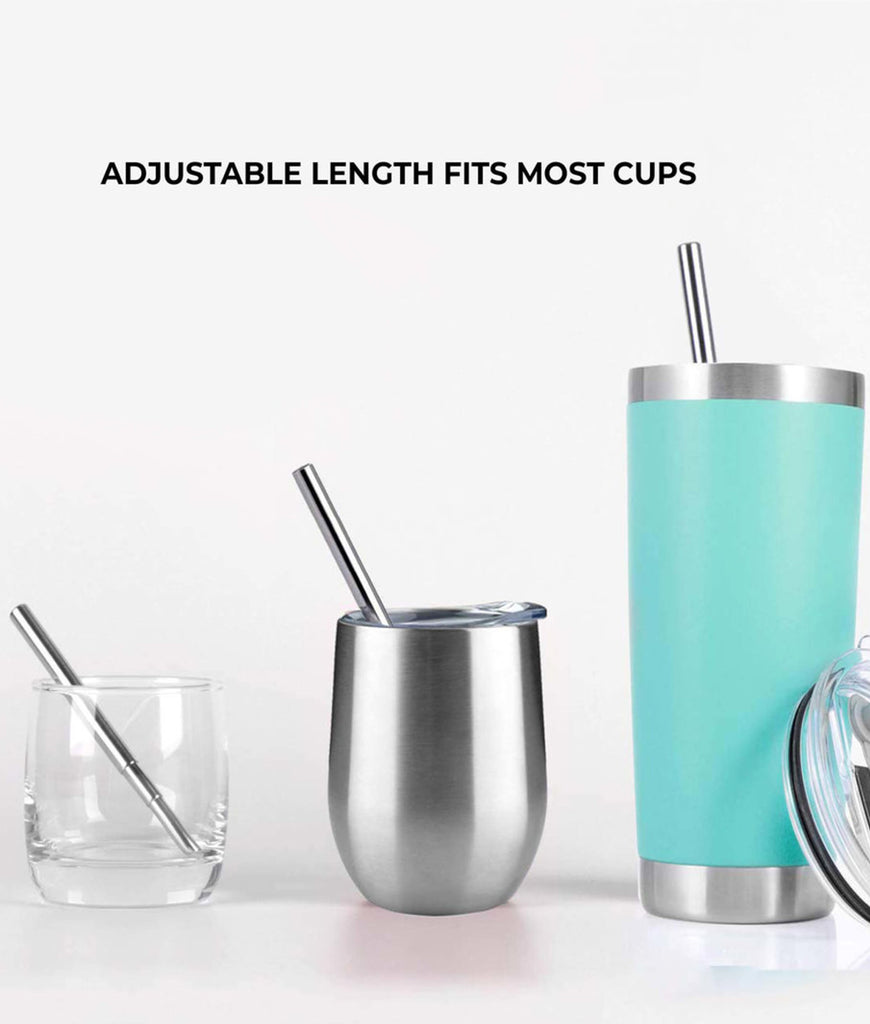 Zero Waste Club Collapsible Metal Straw & Travel Case - Silver