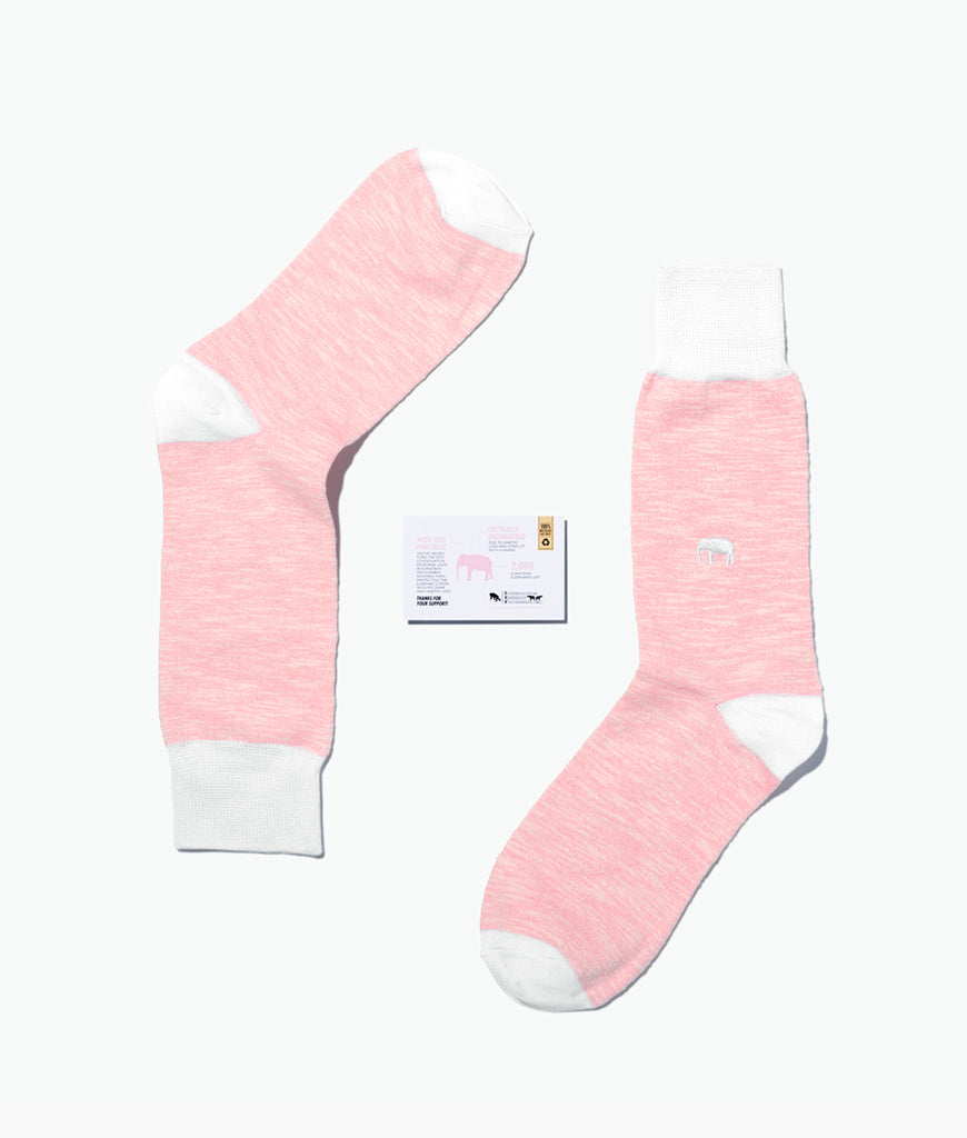 Critically Endangered Socks Sumatran Elephant
