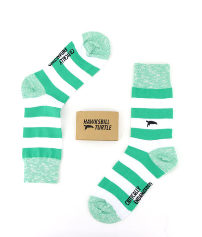 Critically Endangered Socks Hawksbill Turtle - Striped