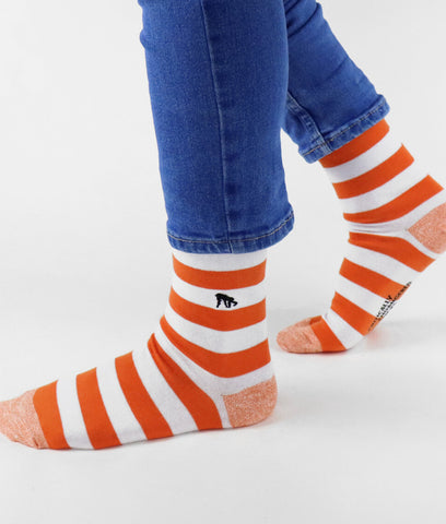 Critically Endangered Socks Borneo Orangutan - Striped