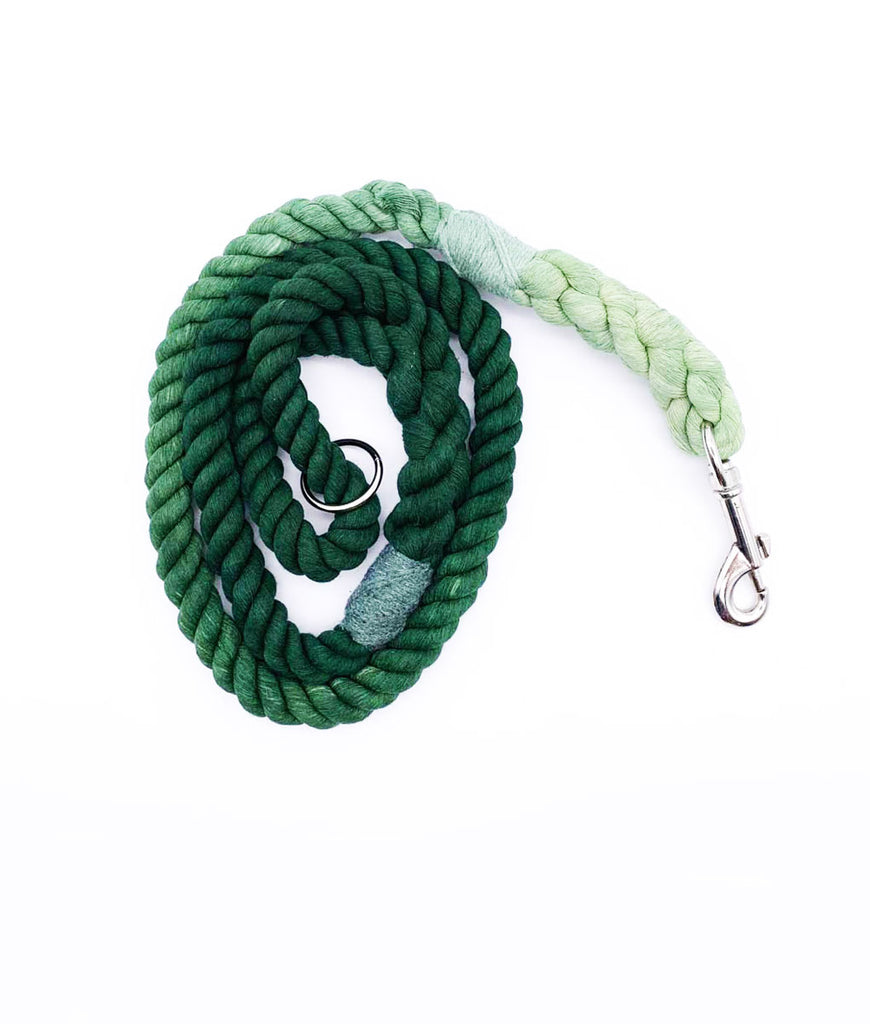 Jolly Hound Cotton Dog Lead - Green Ombre