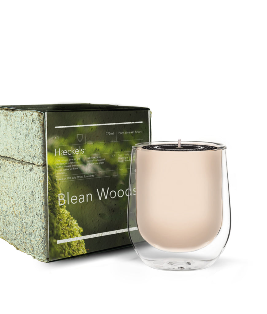 Haeckels Blean Woods Candle