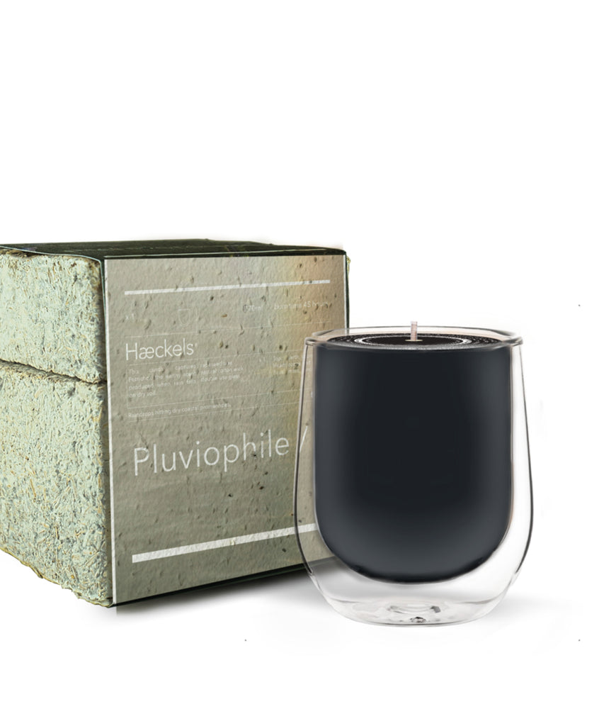 Haeckels Pluviophile Rain Candle
