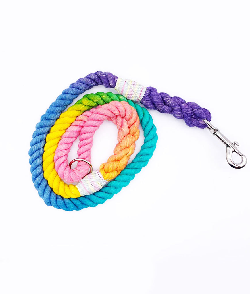 Jolly Hound Cotton Dog Lead - Rainbow