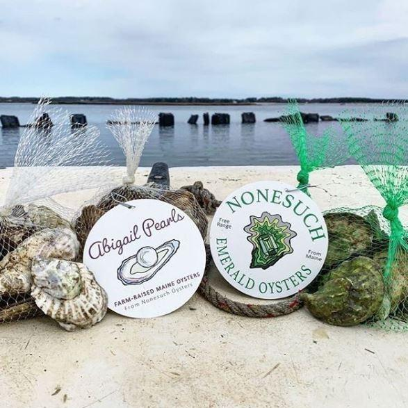 Nonesuch Maine Oysters