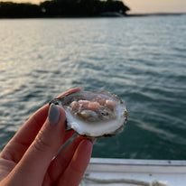 Blaney Point Maine Oysters