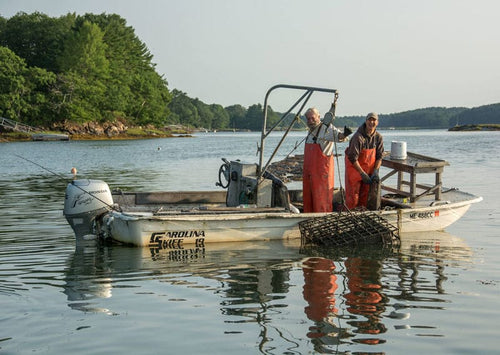 Maine Oyster Farmers in boat with oyster cage