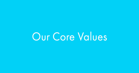 Our Core Values at Twenty One Toys
