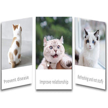 Load image into Gallery viewer, Re-usable Pet Grooming Gloves |Deshedding Groom Washing Gloves 1 Pair