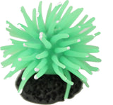 Poppy Pet - Sea Anemone