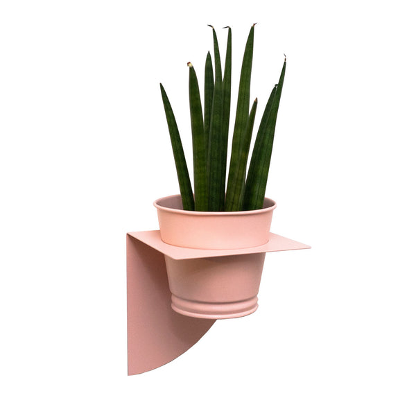 Arc Planter | Blush Pink