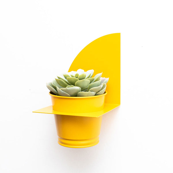 Arc Planter | Mustard Yellow