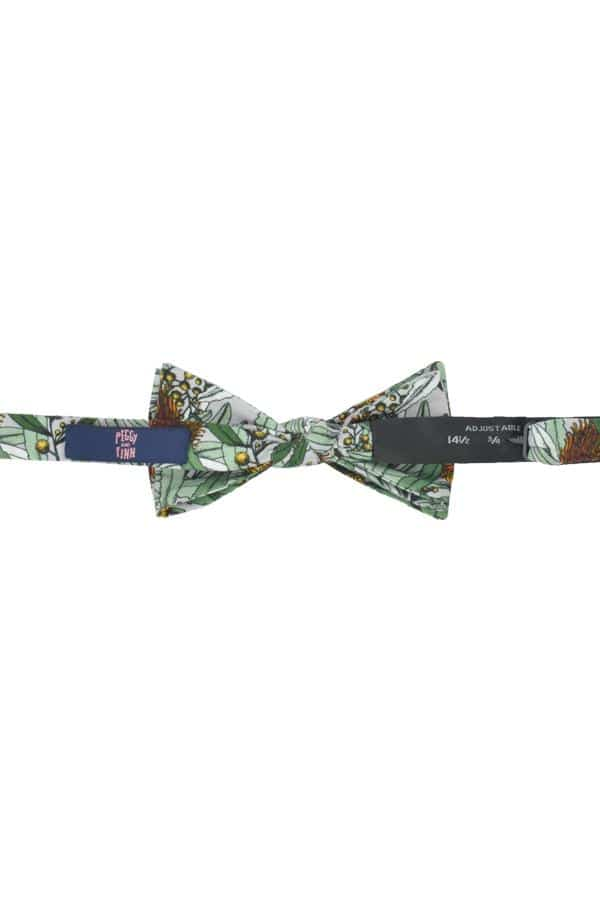 Bow Tie Banksia Grey Back