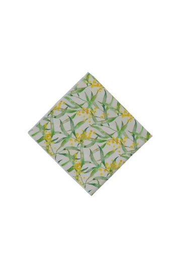 Pocket Square Wattle Australian