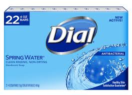 DIAL BAR SOAP SPRING 4 OZ x 22 Pack